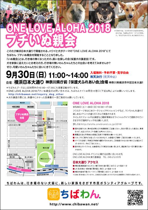 OLA2018_poster