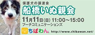 20181111funabashi_320x120