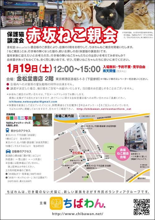 akasaka10_poster