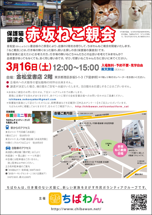 akasaka11_poster