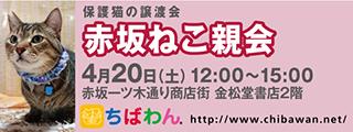 20190420akasaka_320x120