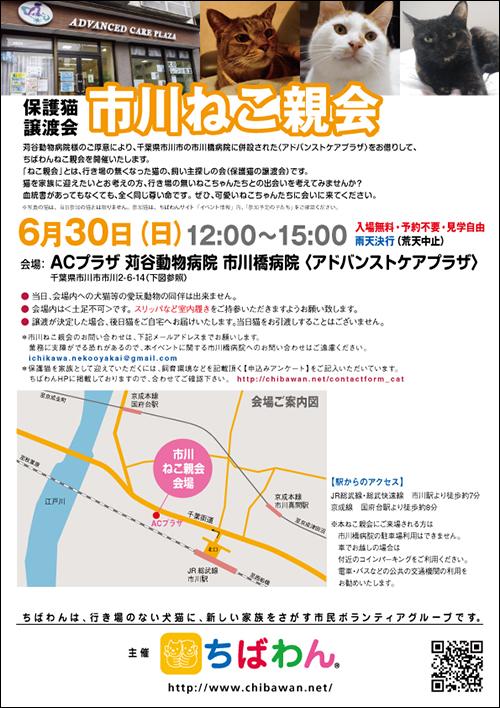 ichikawa25_poster