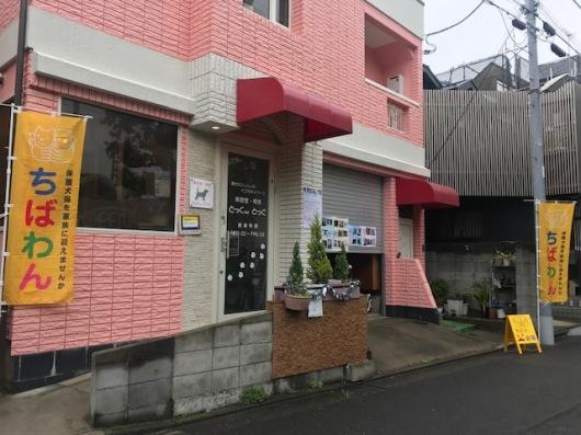 event-190630-katsushika_会場①