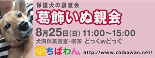 20190825katsushika_320x120
