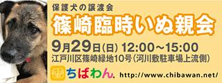 20190929rinji_320x120