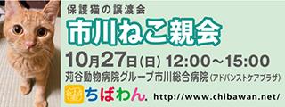 20191027ichikawa_320x120